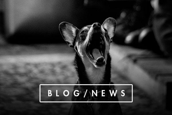 blog_nav.jpg
