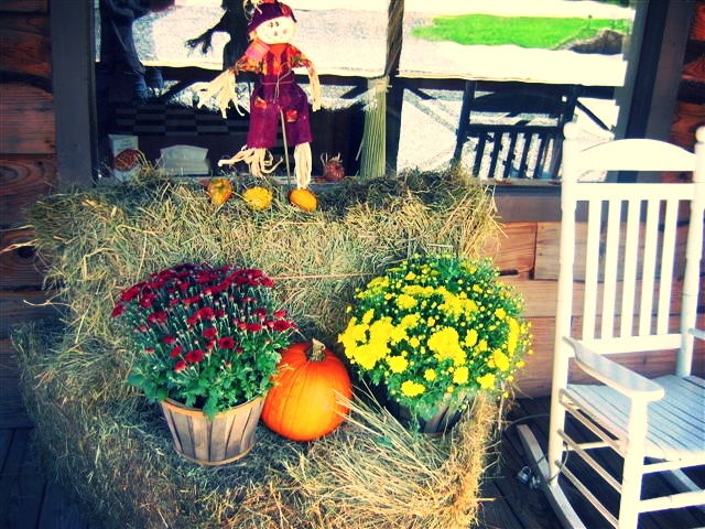 fall-at-trust-2009-013.jpg