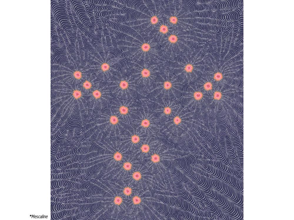 KB-Mescaline, 2012 (7523) (Print).jpg