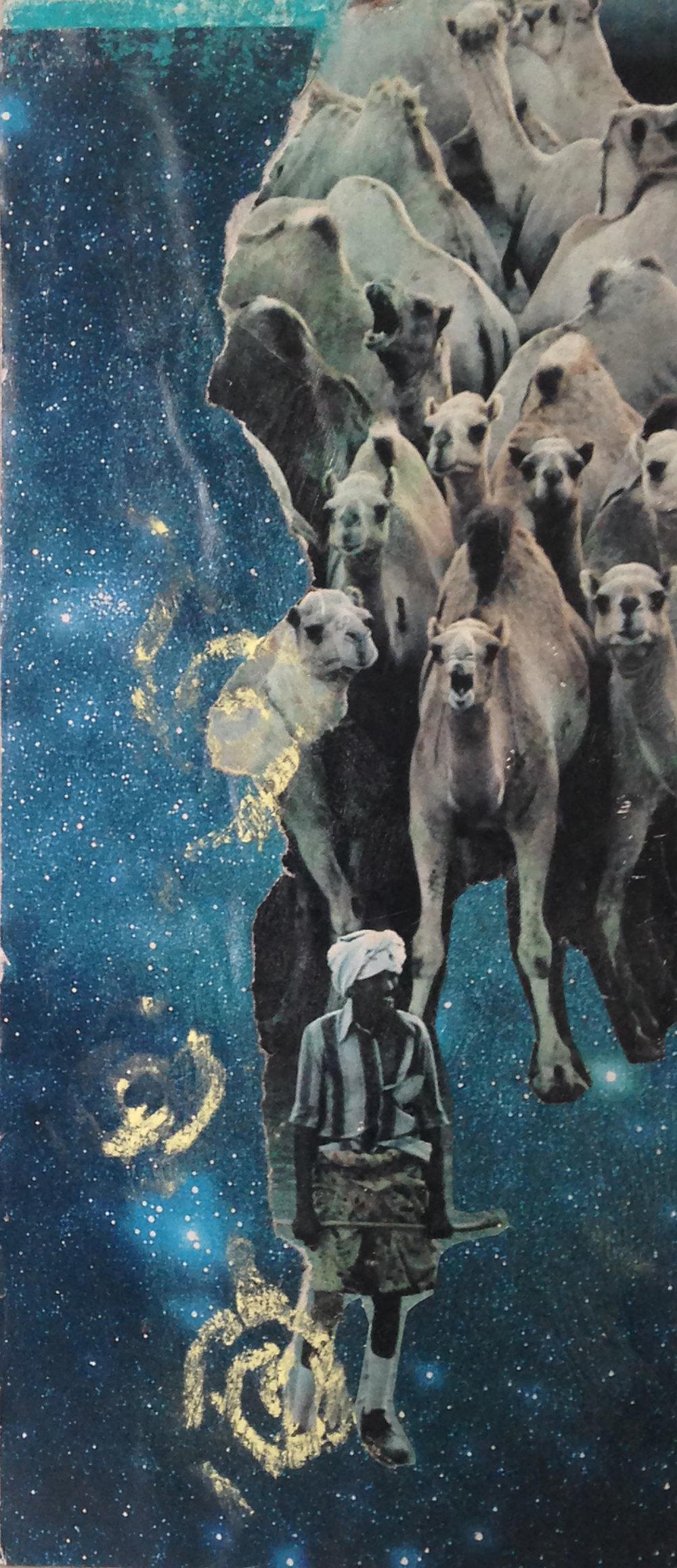 Rebecca Schultz.Camel Collage.jpg