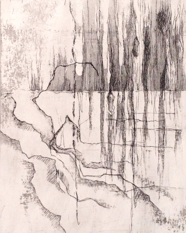 Rebecca Schultz.Prince Edward County.etching.jpg