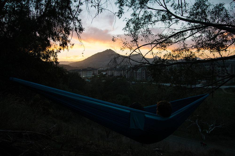 hammock-2.JPG