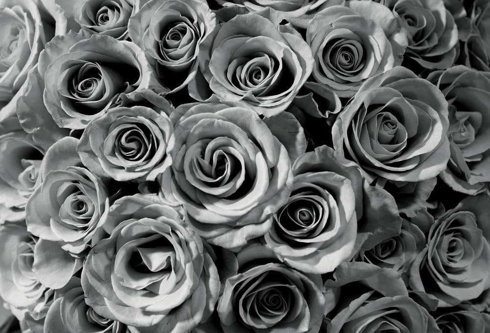KANYE(Roses).jpg