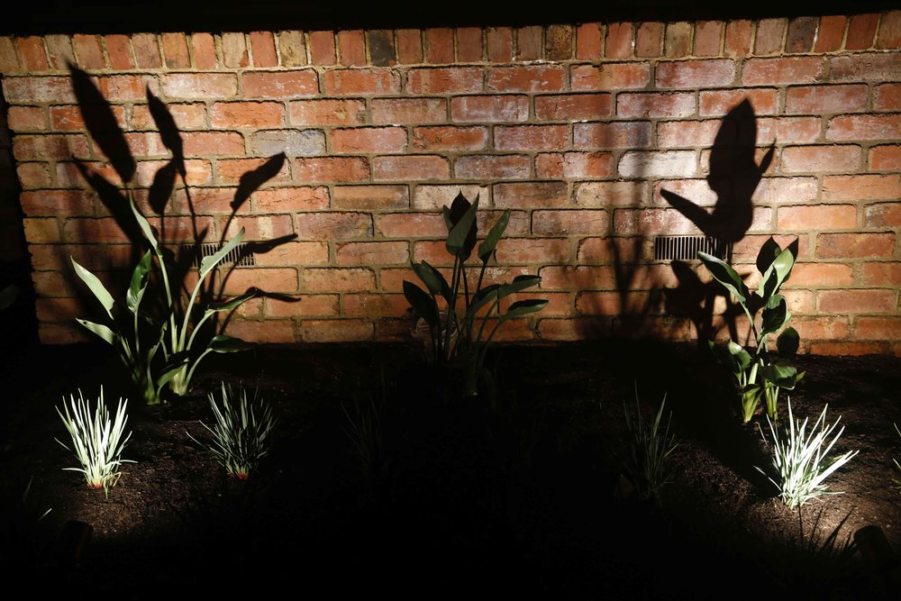 Copper uplights illuminate specific features of the garden.