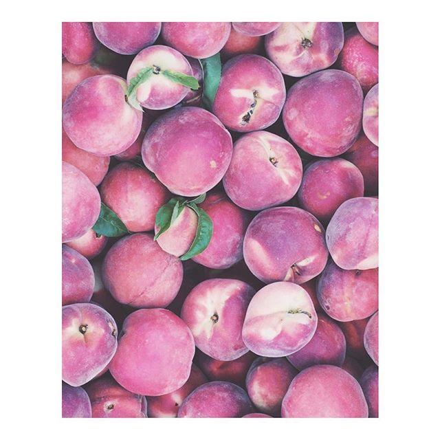Santa Fe farmers market... 😋🍑 . . . . #santafefarmersmarket  #peaches #delicious  #somewheremagazine  #stayandwander #nmlife  #organic #simplysantafe  #nothingisordinary  #theartofslowliving  #neverstopexploring  #purenm #myfeatureshoot  #tlpicks #vsco #fruit  #newmexicotrue #santafe