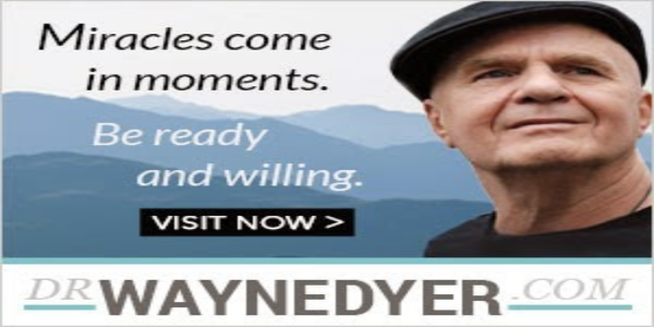 MIRACLES-COME-IN-MOMENTS-Wayne-Dyer-General-(300x250)4.jpg