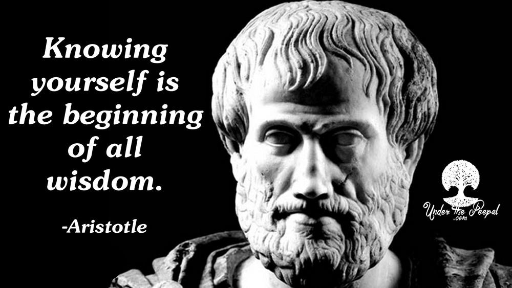 Aristotle-Wisdom