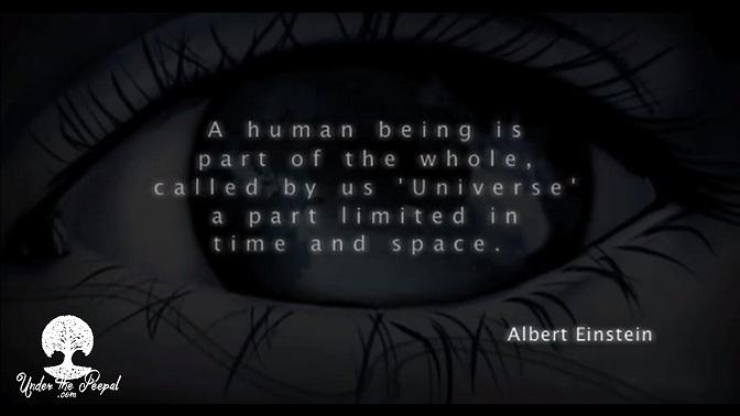 Universe,Albert  Einstein
