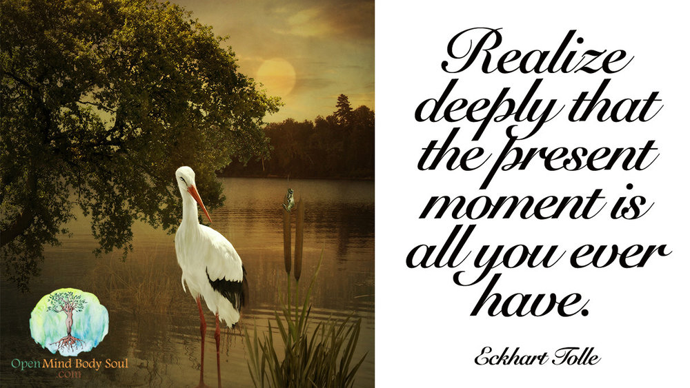 Realise deeply that the present moment is all you ever have - Eckhart Tolle Quote