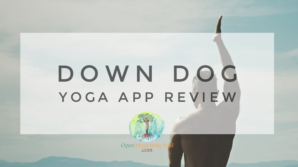 Best_Yoga_App_DownDog_Review