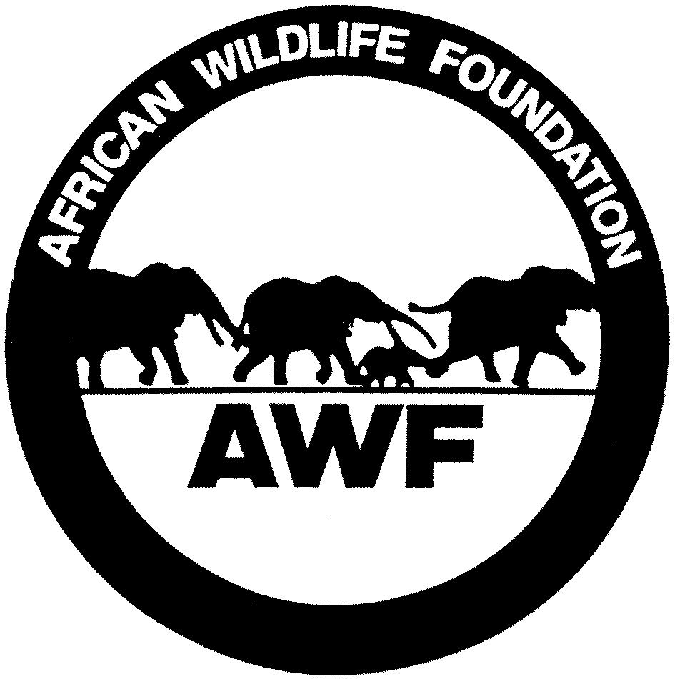 African Wildlife.jpg
