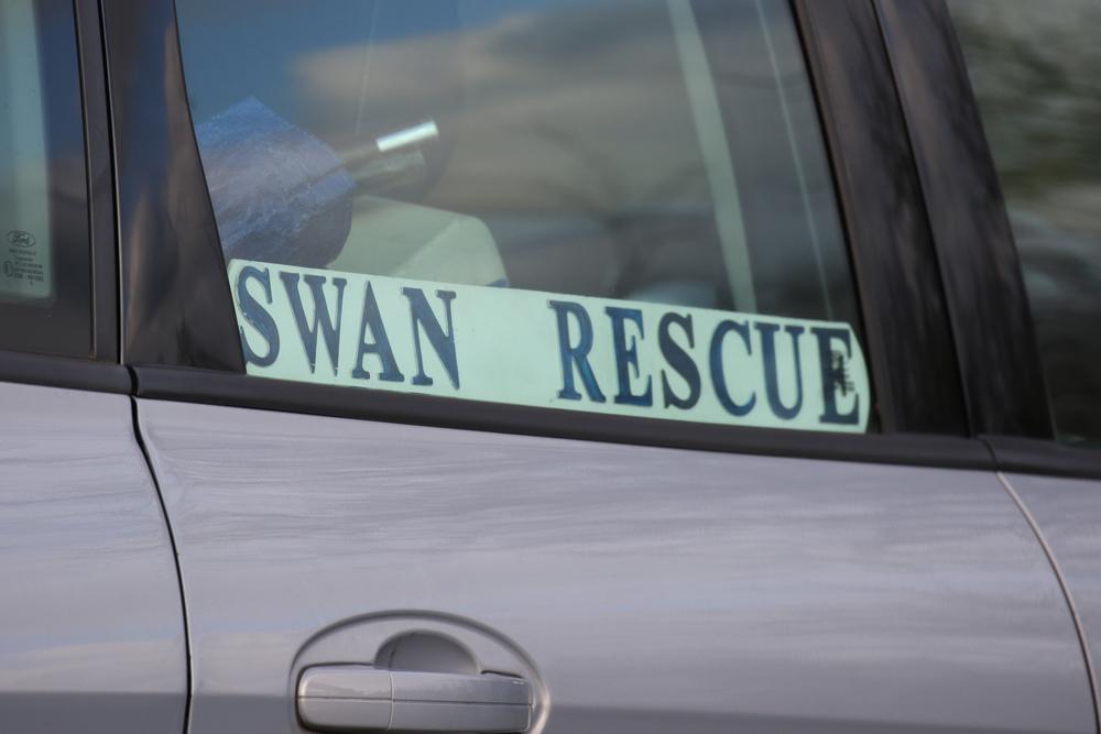 Swan Rescue Sign.jpg
