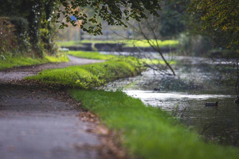 Canal Walk 1st November.jpg