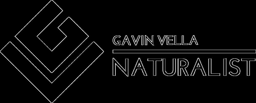 Gavin Vella Naturalist