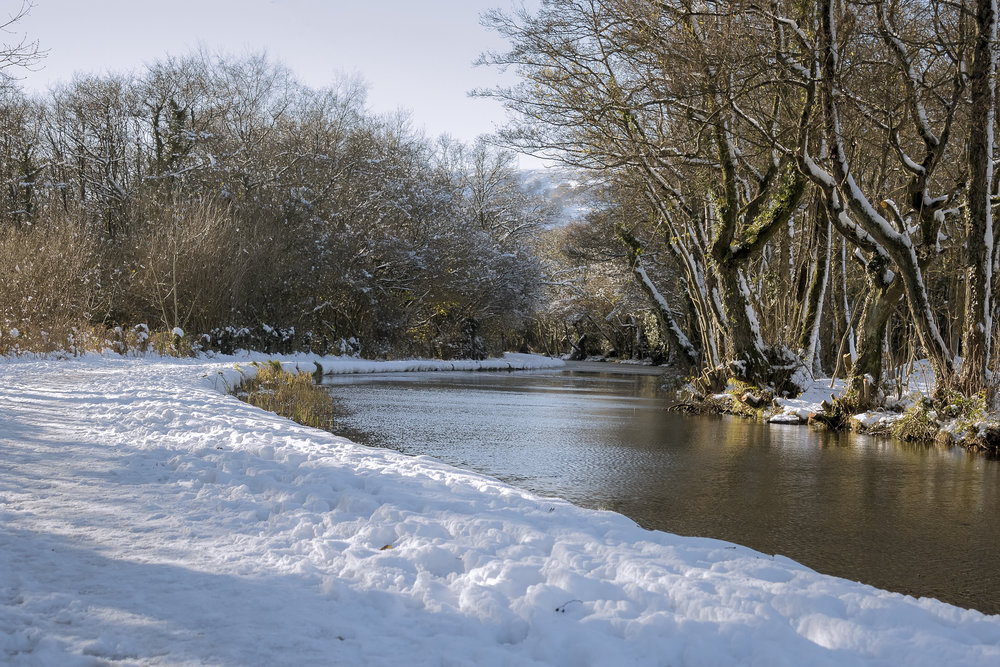 South Sebastopol Snow 11th December.jpg