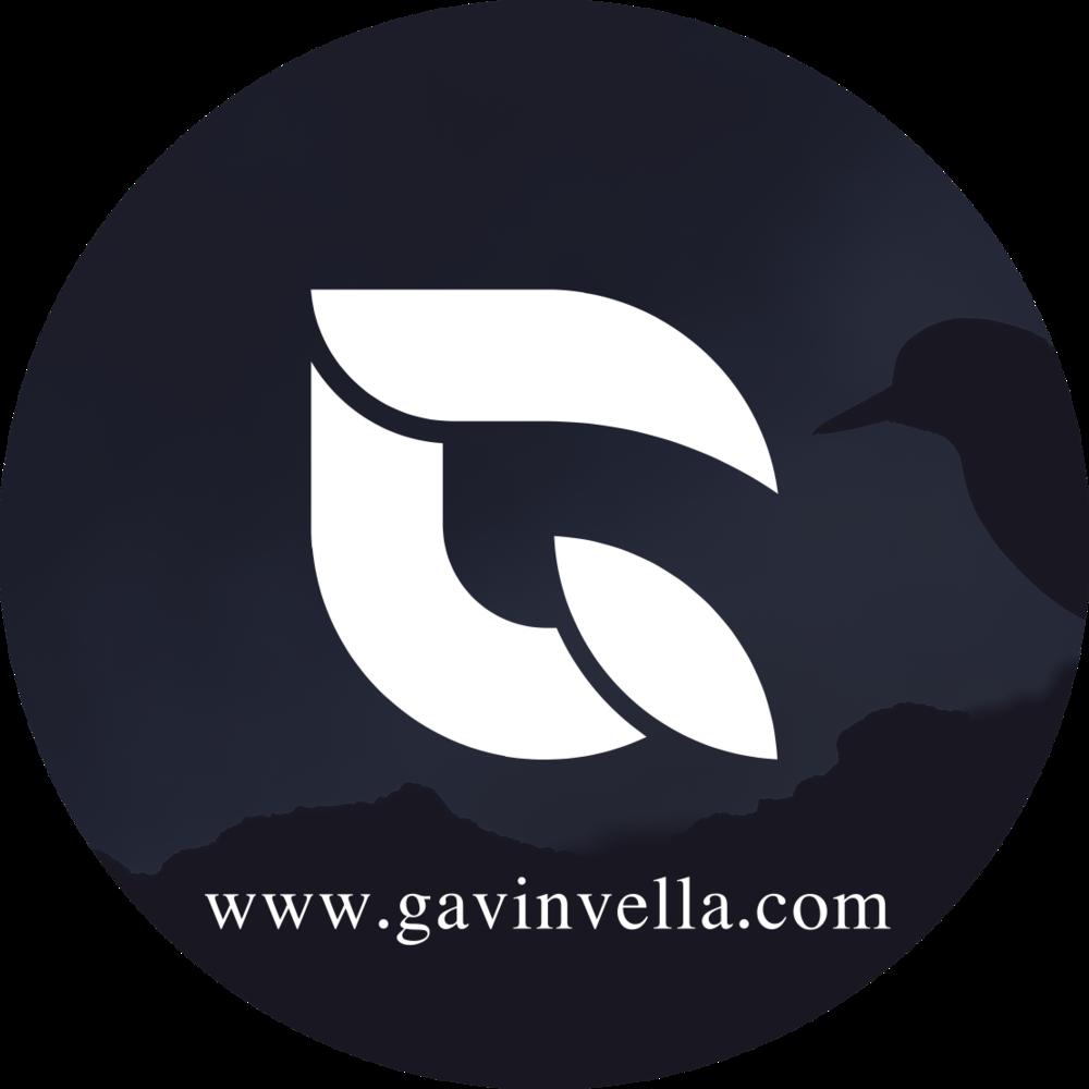 www.gavinvella.com