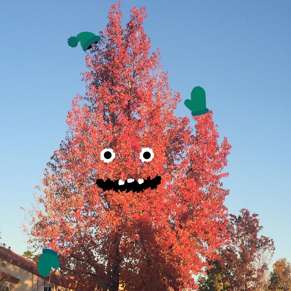 treesayshi.jpg