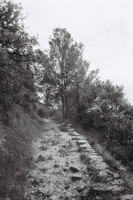 Mid-hike.