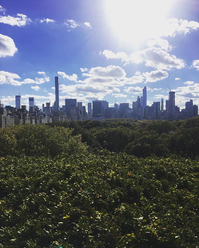 Up on the roof 🏙 #views #fromwhereistand #skyline #sunday #weekend #centralpark #thegreatoutdoors #stroll #inspiration #themet #shippernyc