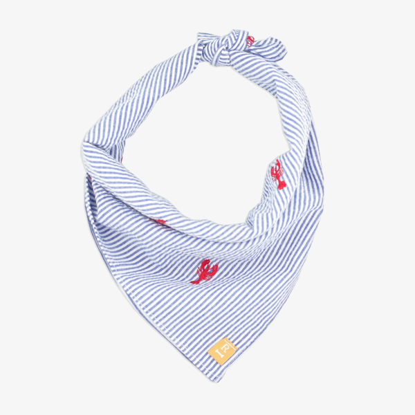 dog-bandana-lobster_grande.png
