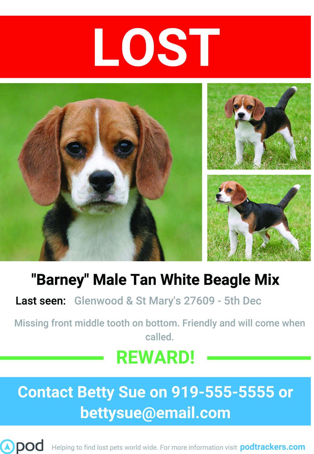 Barney Lost Dog Poster.jpg