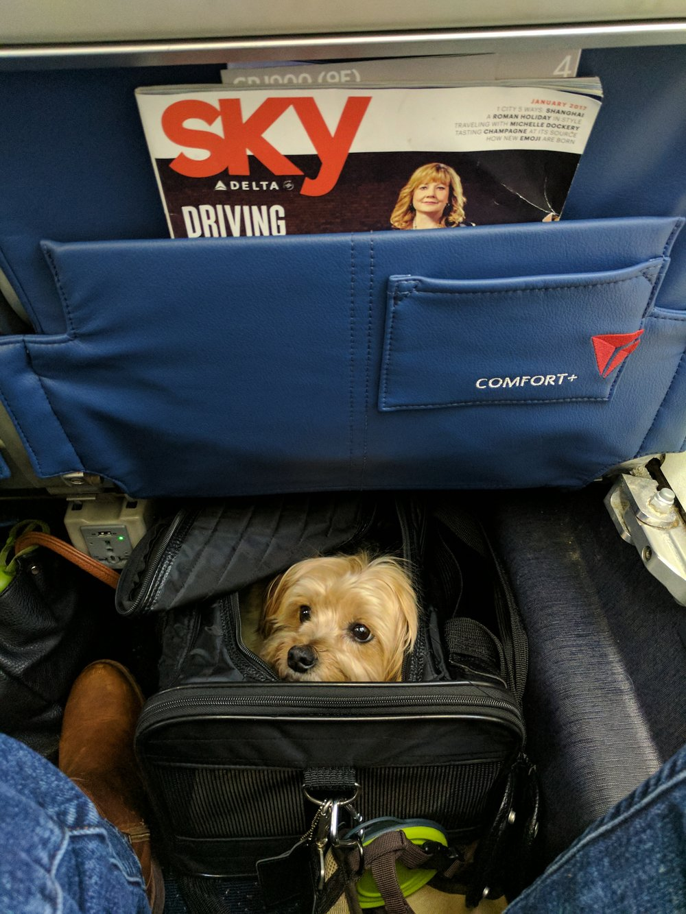"""Danny gets """"comfort+""""able on Delta"""