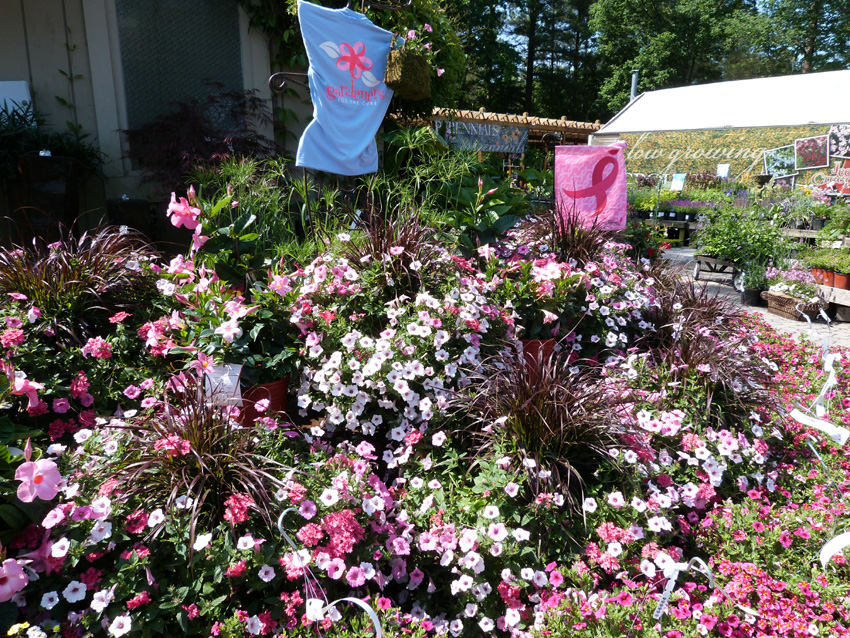 Gardener's For the Cure- 2013entry-Garden Supply Co
