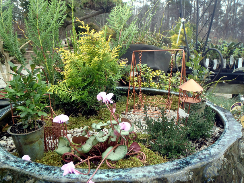 Gardening In Miniature Workshop