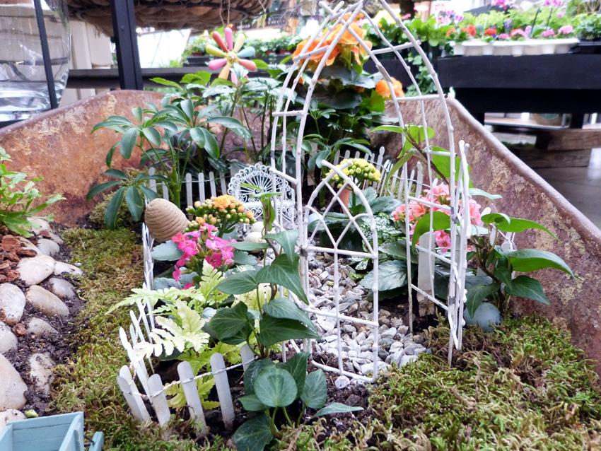 Gardening in Miniature2