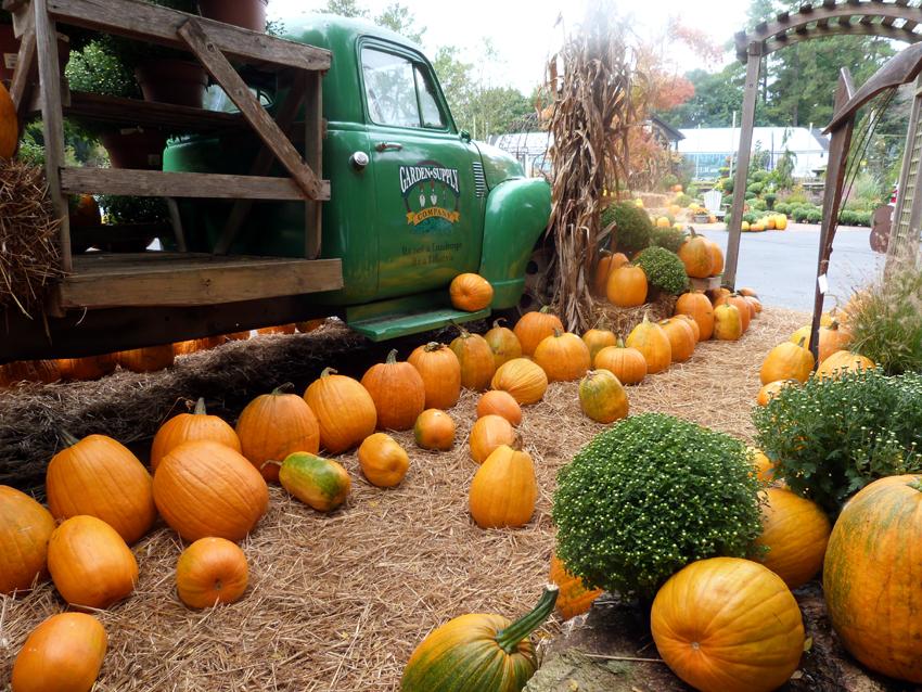 Fall Entry 2013 2  Garden Supply Co