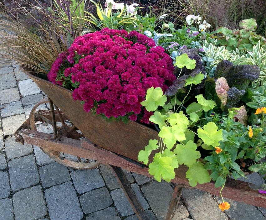 Container Garden for Fall- Garden Supply Co