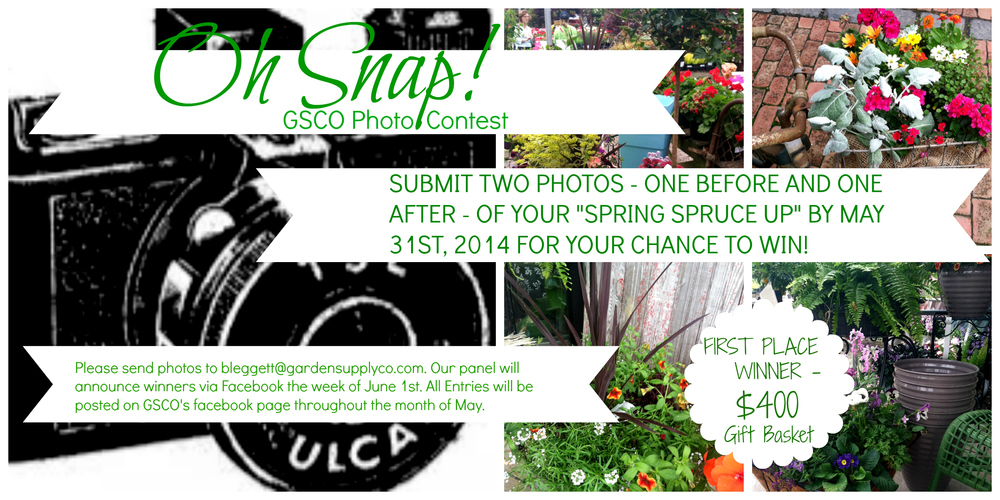Oh Snap spring photo contest