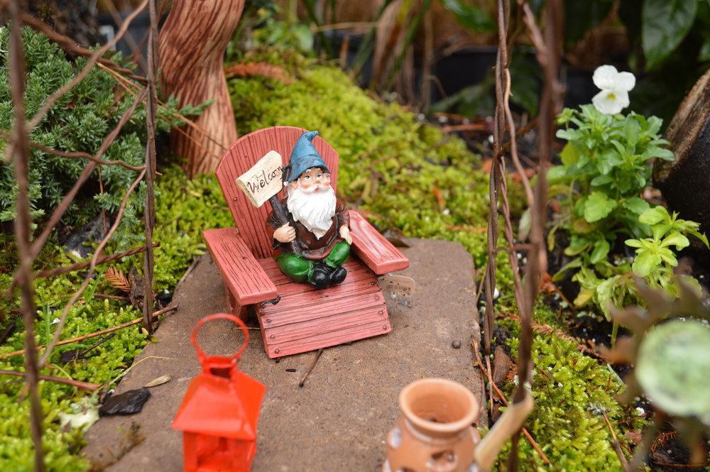 Pre-made Fairy Gardens