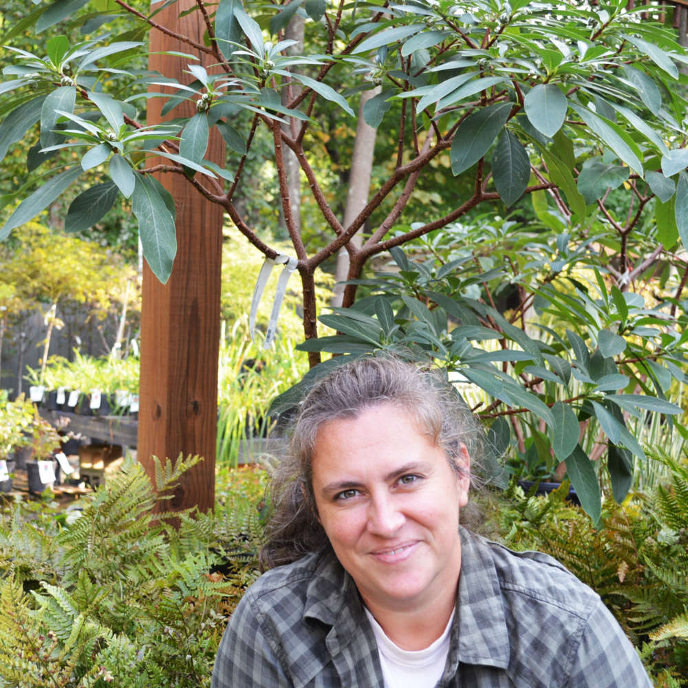Jenny Galicia-McDaniel, Gardener
