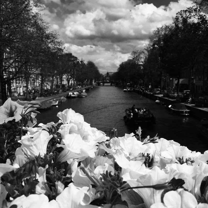 Goodsir-Amsterdam4.jpg