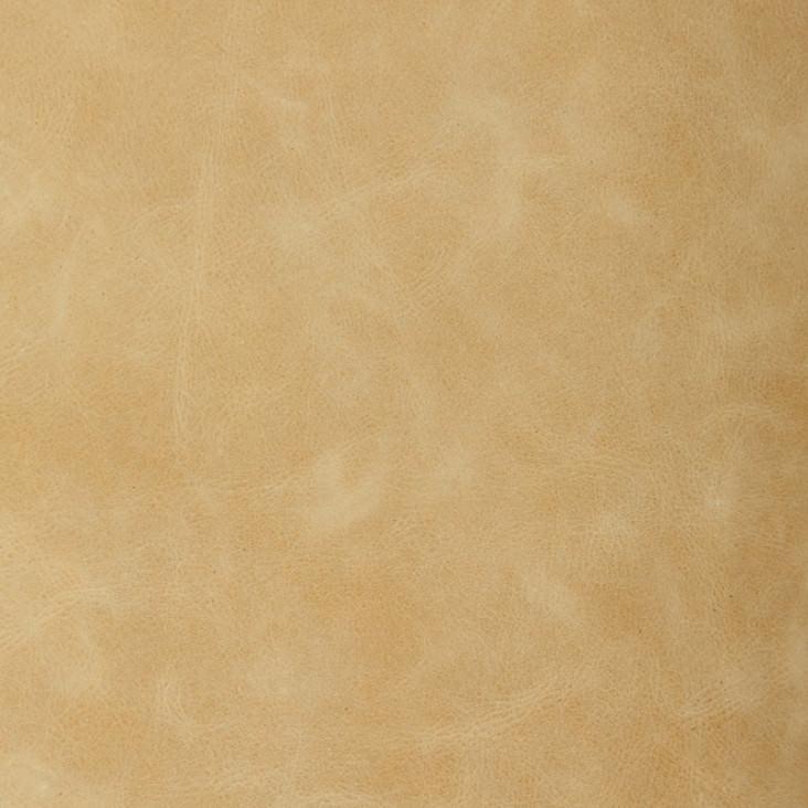 Copy of Palomino