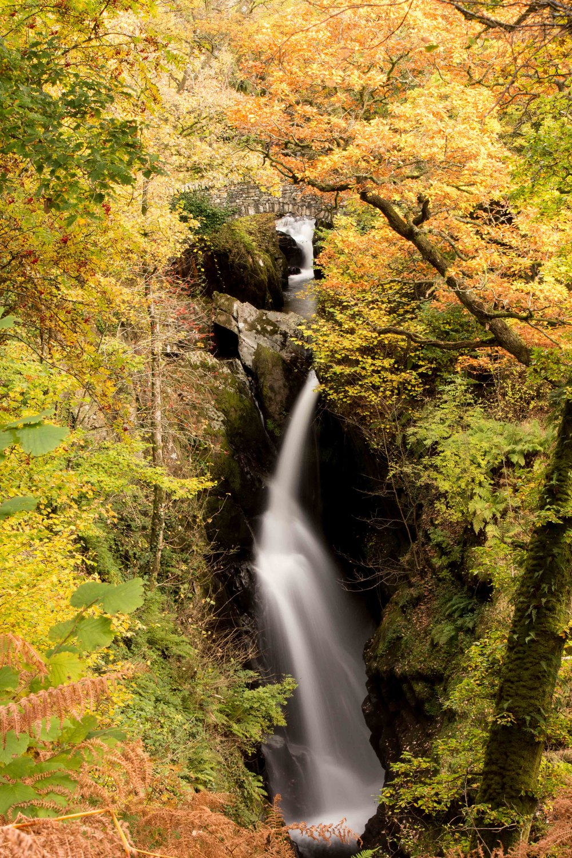Aira Force | Ullswater | Lake District