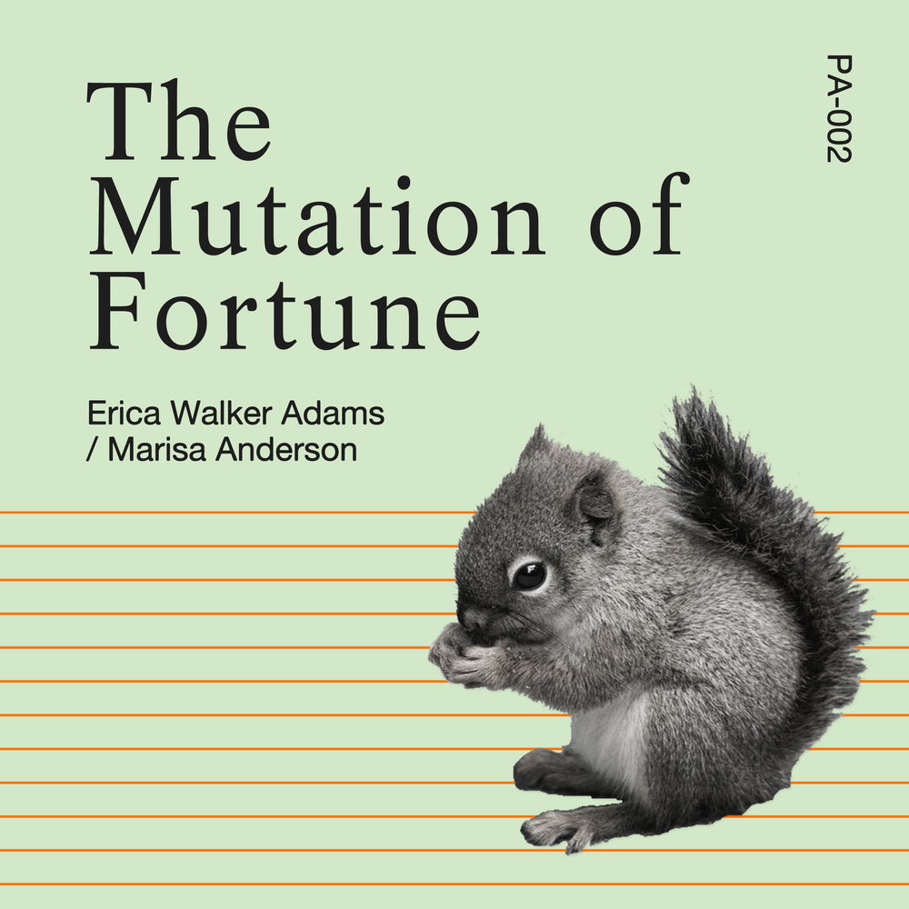 PA002 - Mutation of Fortune.jpg
