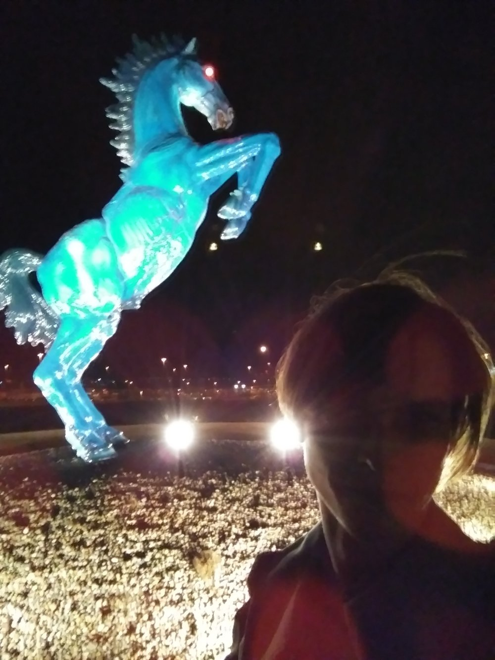 Myself &  Blucifer , a horse that cursed all these United States, Denver, CO.