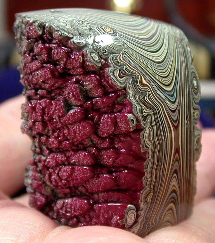A specimin of  Fordite
