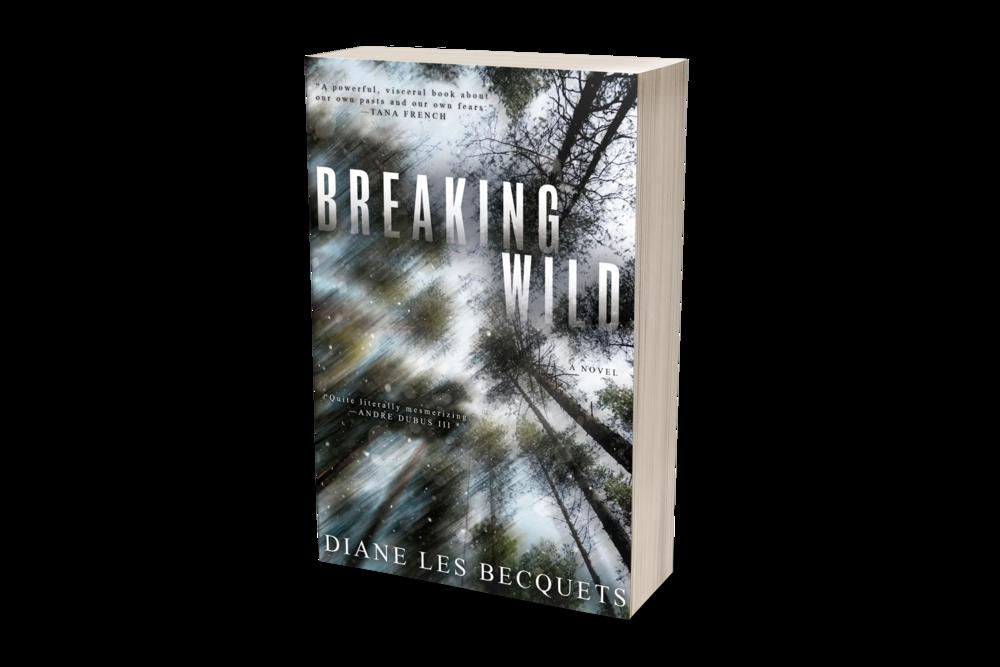 Nikki – Breaking Wild paperback mockup.png