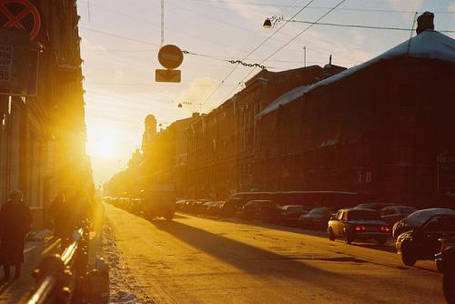 film-grain :     (by  alla nestulova )