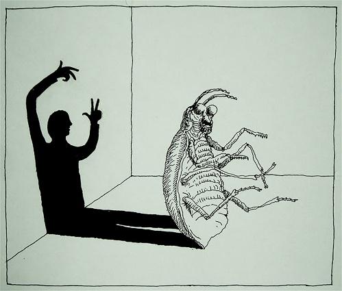 nevver :      Metamorphosis