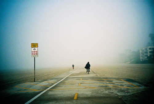 film-grain :      Fog  (by  mikey )