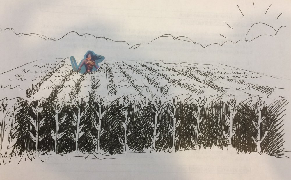 5. July 29, 2017 - Wonder Woman of the Corn