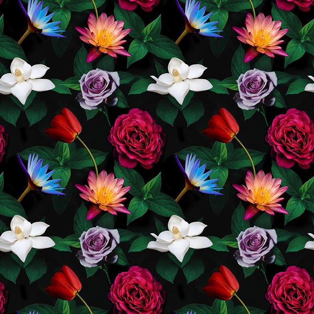 🌺 Our entry for @spoonflower's #MoodyFlorals design challenge. Visit spoonflower.com to vote for your favorites! #spoonflower #designchallenge #floralprint #floralpattern