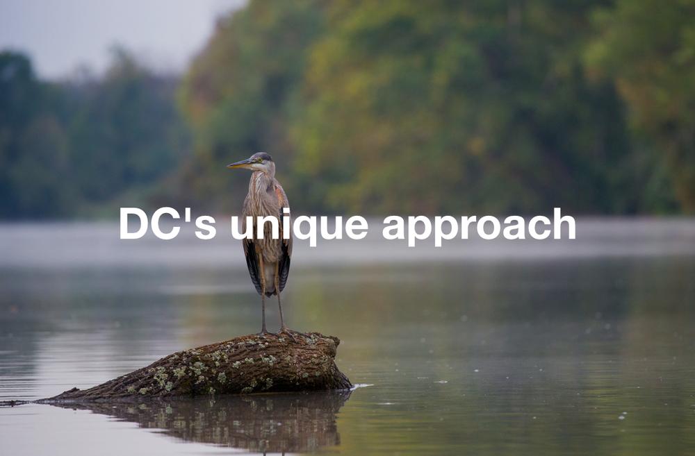 dcs_approach1.jpg