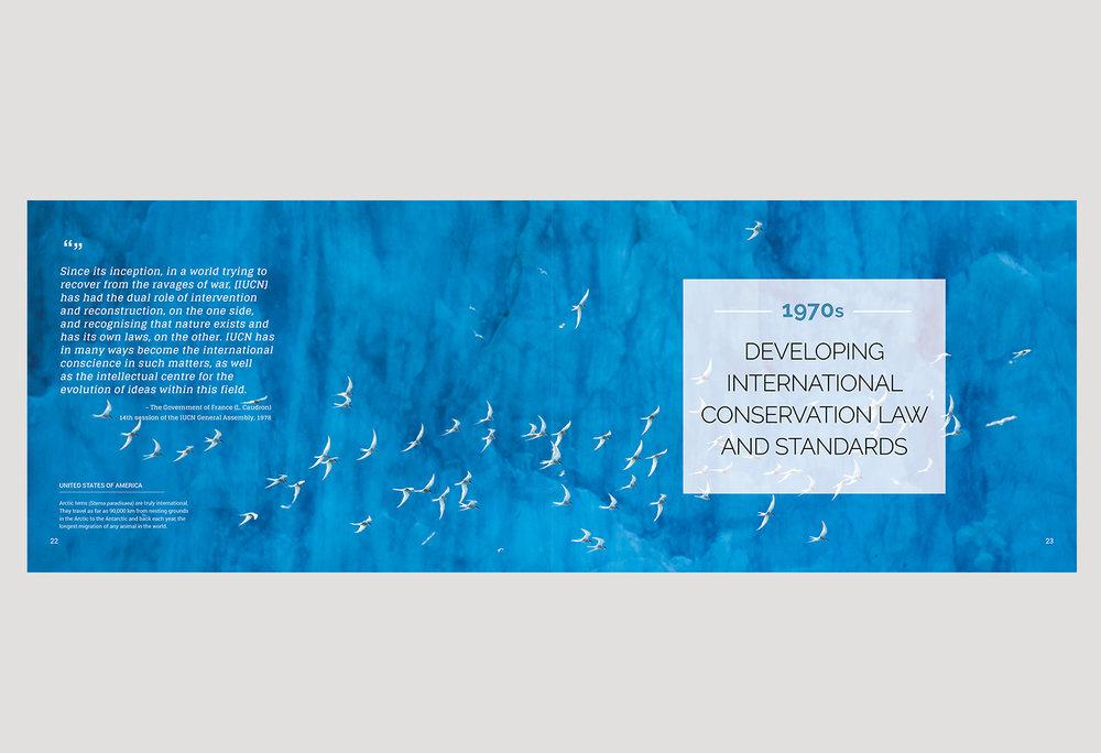 01-PICA-website-IUCN-ENG-22-23.jpg