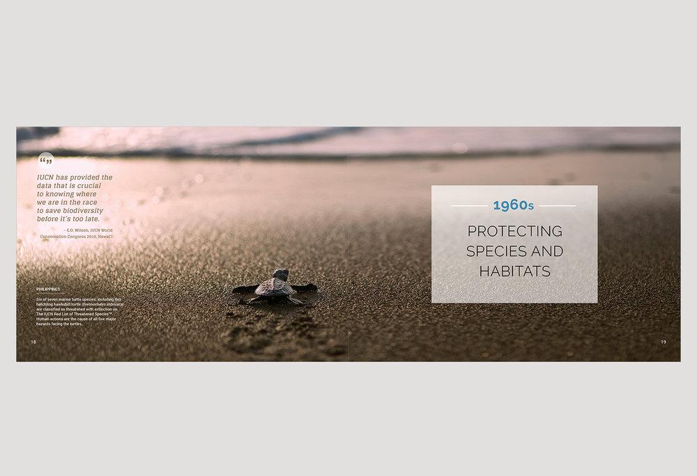 01-PICA-website-IUCN-ENG-18-19.jpg