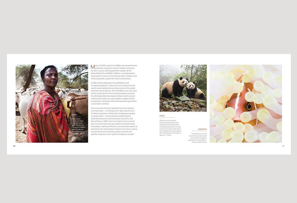 01-PICA-website-IUCN-ENG-P20-21.jpg